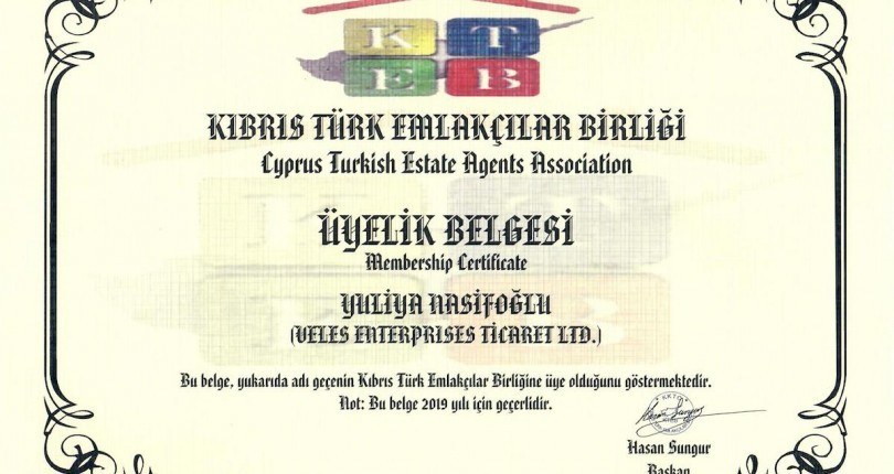 Real Estate Agency License
