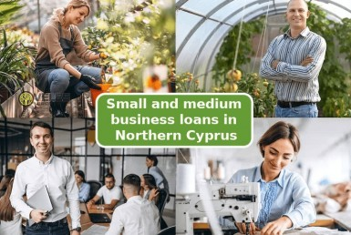 Small and medium business loans in Northern Cyprus