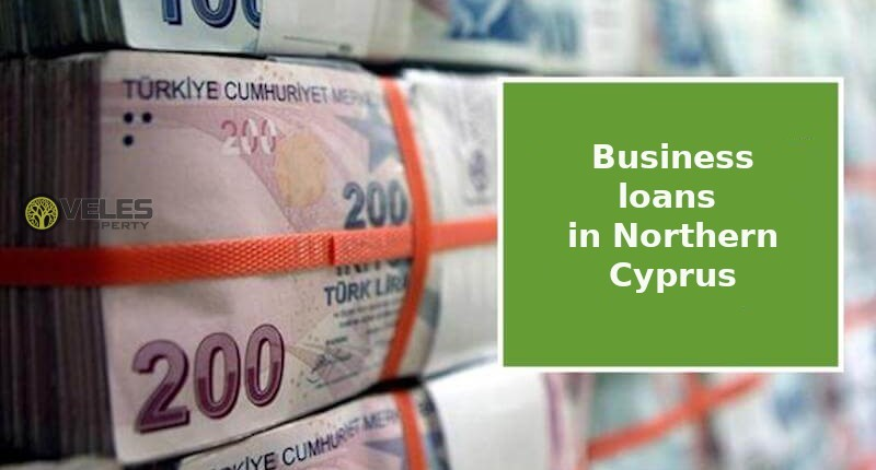 Business loans in Northern Cyprus during the crisis